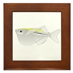 Silver Hatchetfish f Framed Tile