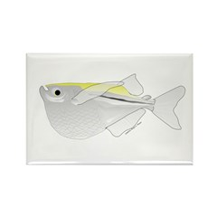 Silver Hatchetfish f Rectangle Magnet