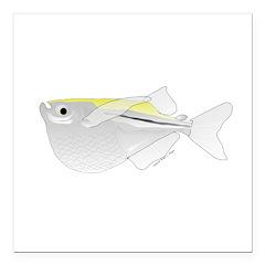 Silver Hatchetfish f Square Car Magnet 3