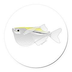 Silver Hatchetfish f Round Car Magnet
