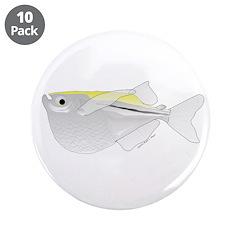 Silver Hatchetfish f 3.5