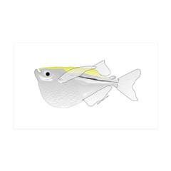 Silver Hatchetfish f Wall Decal