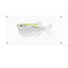 Silver Hatchetfish f Banner