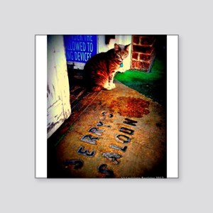Molly's Cat Sticker