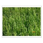 Grass Small Poster