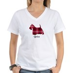 Terrier - Brice Women's V-Neck T-Shirt