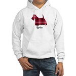 Terrier - Brice Hooded Sweatshirt