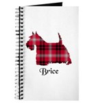 Terrier - Brice Journal