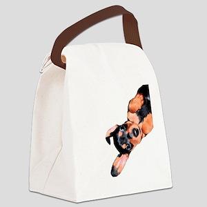 Upside Down dox Canvas Lunch Bag