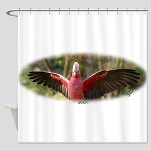 Galah 9Y319D-007 Shower Curtain