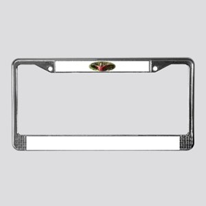 Galah 9Y319D-007 License Plate Frame