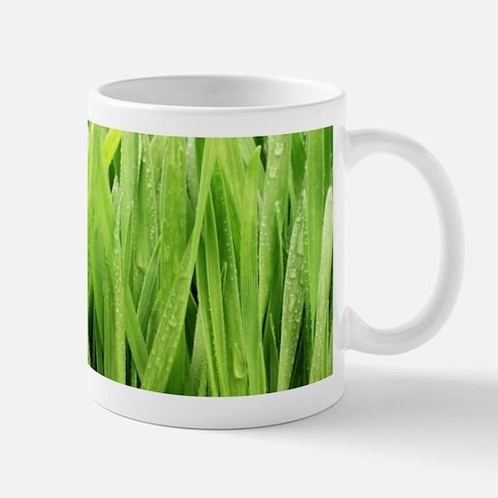 Close Up Grass After A Rainstorm Mug