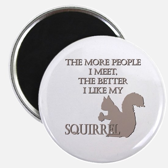 Like My Squirrel Magnet