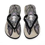 Dutch Shepherd Flip Flops