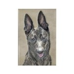 Dutch Shepherd Rectangle Magnet (100 pack)