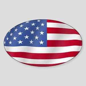 Pure Flag America Oval Sticker