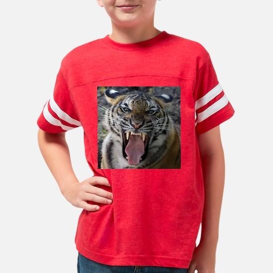 15x15 Mighty Roar 2 Youth Football Shirt