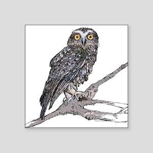 "Boobook Owl Square Sticker 3"" x 3"""
