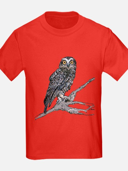 Boobook Owl T