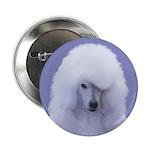 Standard Poodle (White) 2.25