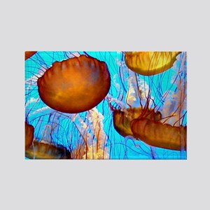 jellyfish madness Rectangle Magnet