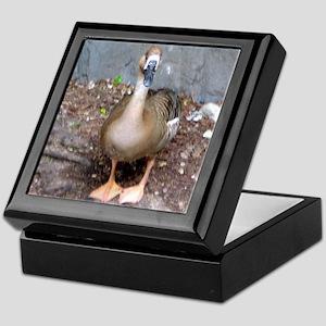 swan goose Keepsake Box