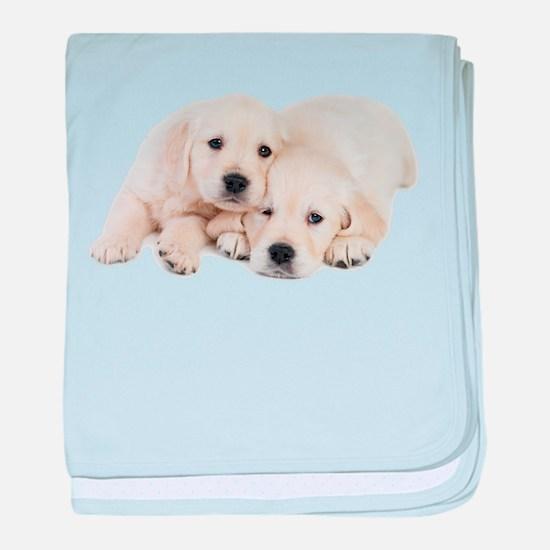 White Labradors baby blanket