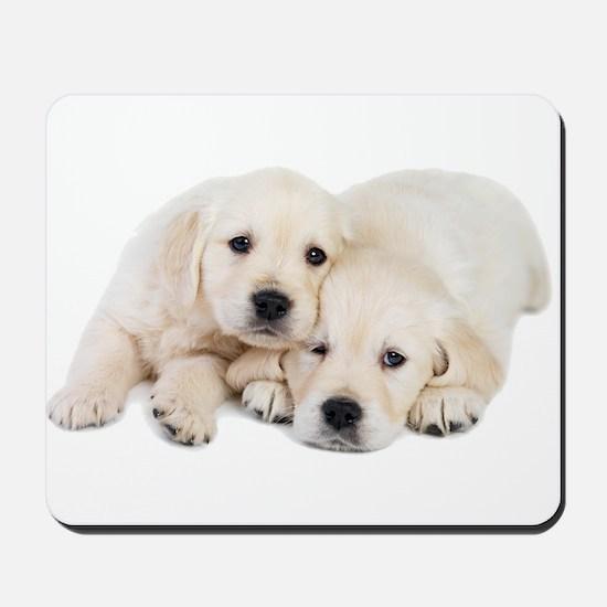 White Labradors Mousepad