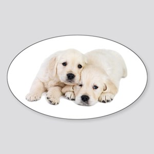 White Labradors Sticker (Oval)