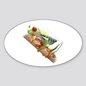 Red Eyed Tree Frog III Oval Sticker