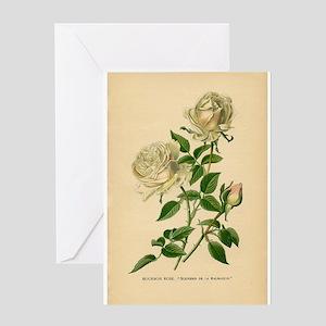 Vintage White Roses Greeting Card