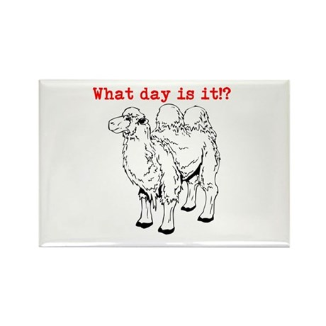 What day is it!? Rectangle Magnet (100 pack)
