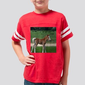 Foal out to pasture Youth Football Shirt