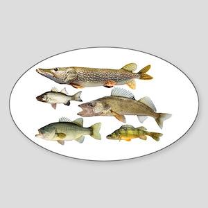 All fish Sticker