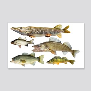 All fish Wall Decal
