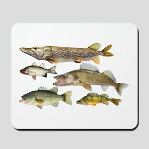 All fish Mousepad