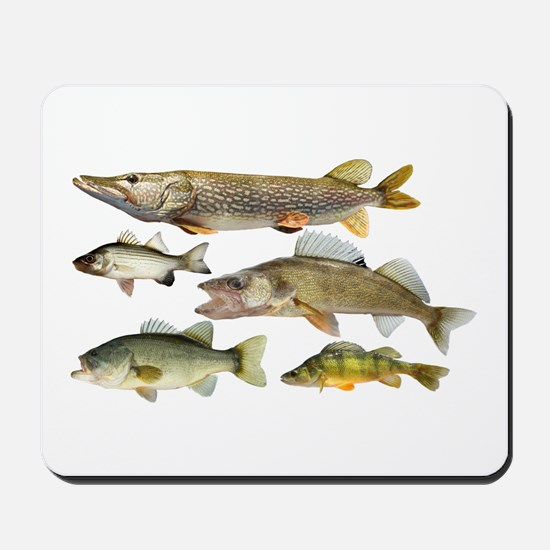 All fish Mousepad
