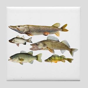 All fish Tile Coaster