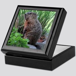 Groundhog Keepsake Box