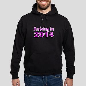 ARRIVING IN 2014 -3 Hoodie