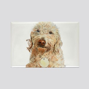 Labradoodle Ginger Magnets
