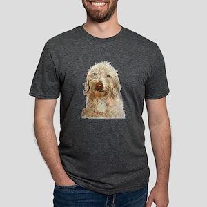 Labradoodle Ginger Mens Tri-blend T-Shirt