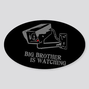 CCTV Big Brother Is Watching Sticker (Oval)