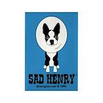 SAD HENRY BOSTON TERRIER DOG Rectangle Magnet