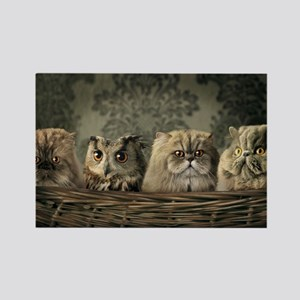 Cute Odd One Out Rectangle Magnet