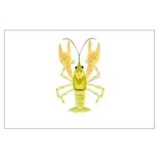 Ozark Spotted Crayfish Posters