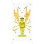 Ozark Spotted Crayfish Banner