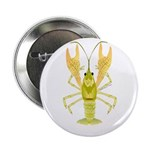 Ozark Spotted Crayfish 2.25