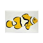 Clownfish t Rectangle Magnet (10 pack)