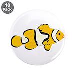 Clownfish t 3.5
